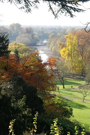 View from Richmond Hill to the river