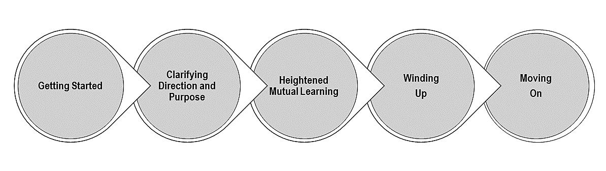 Mentoring process