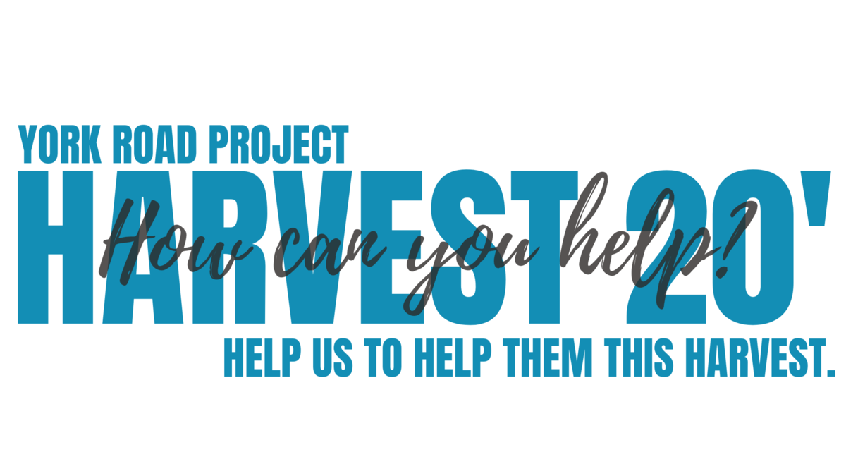 York Road Project Harvest 2020 Campaign